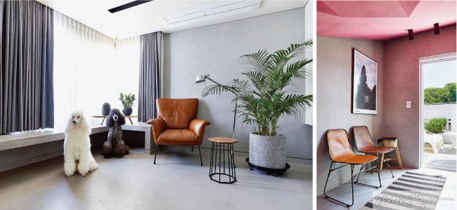 1층 거실은 이탈리아산 그레이 컬러 마이크로토핑 자재를 벽과 바닥에 시공해 스튜디오처럼 연출했다. 이 집의 귀염둥이인 스탠더드 푸들 샬롯(왼쪽)과 미쉘이 휴식을 취하기에도 제격인 공간이다.(왼쪽) 옥상으로 올라가는 계단 천장은 핑크색을 칠해 화사하게 연출했다. 옥상에는 화이트 테이블과 의자를 놓아 힐링 공간으로 활용 중이다.
