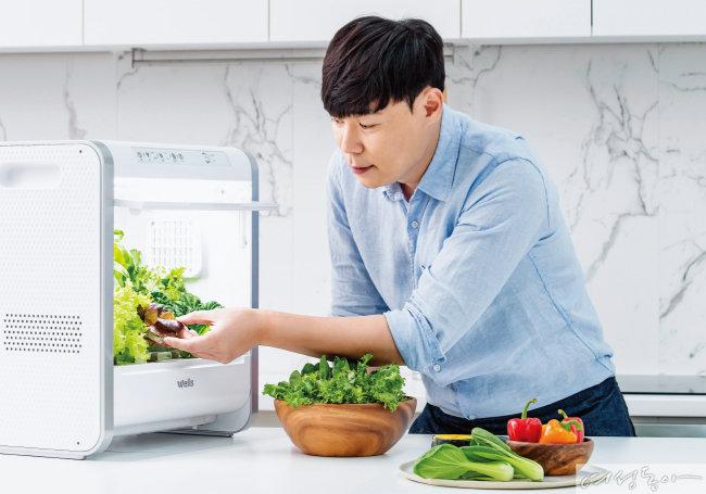건강 채소 솔루션 '웰스팜' 레시피