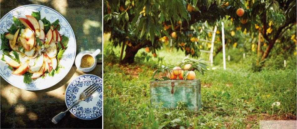 Summer Fruits Recipe