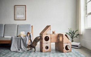 건축가 집사가 고양이를 위해 종이상자 디자인을 하면?