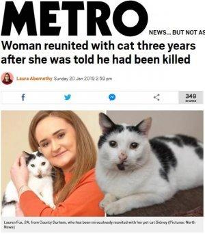 3년간 죽은 줄 알았던 고양이가 살아있다고?