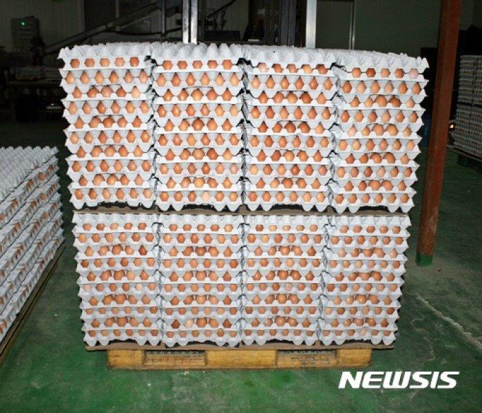 살충제 계란 전수검사 최종 결과 18일 발표…검출 농장 더 늘 듯