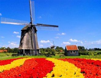 물 색 꽃…지구촌 봄축제