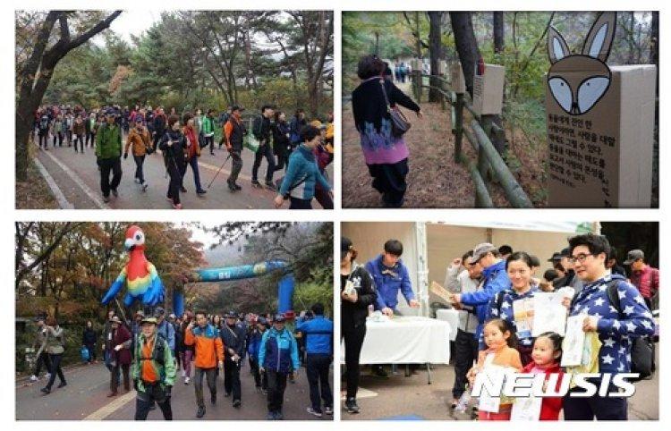 '오색단풍으로 물든 남산' 11월초까지 가을행사 풍성