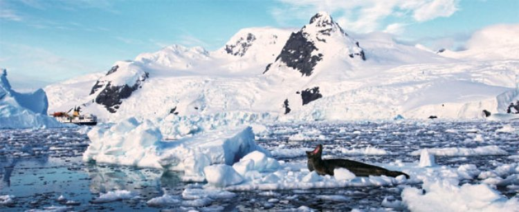 남극 대륙… 의지의 땅이 유혹하다