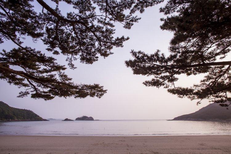 자동차로 떠나는 국내 섬 여행, 어디까지 가봤니