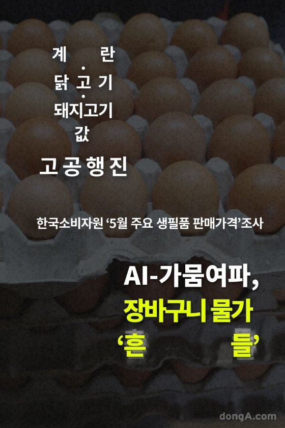 [카드뉴스]계란·닭고기·돼지고기값 고공행진, 장바구니 물가 '흔들'