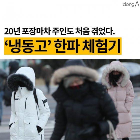 [카드뉴스]20년 포장마차 주인도 처음…'냉동고' 한파 체험기