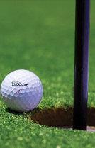 골프와 내기…돈 잃어도 재미있다고?