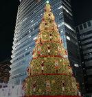 형형색색 크리스마스 이색트리