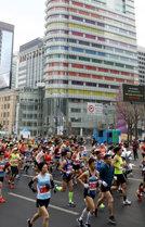 3만 8500명의 달리기서울의 봄을 깨우다