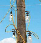 전봇대 나무에불빛 주렁주렁