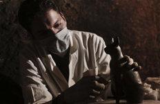 이집트서 6000년전 고양이미라 발굴…부장품 쏟아져