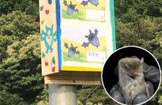 모기 3000마리 꿀꺽…집박쥐를 아시나요?