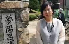 손혜원 의원근황 살펴보니