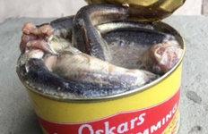 이 세상에 존재하는 가장 경악스러운 음식은?