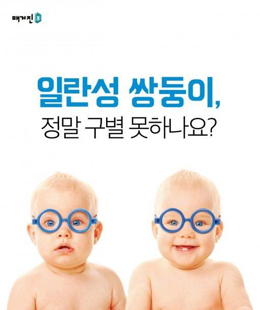 [Magazine D/카드뉴스]일란성 쌍둥이, 정말 구별 못 하나요?