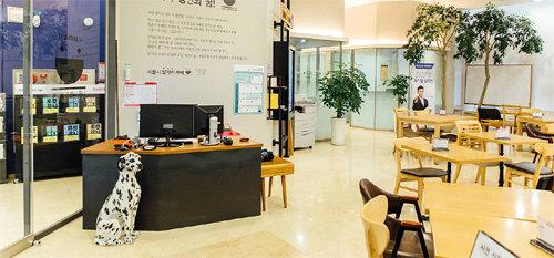 """[청년드림]서울에 청년일자리센터 """"취업준비 한 번에 끝내세요"""" : 뉴스 : 동아닷컴"""
