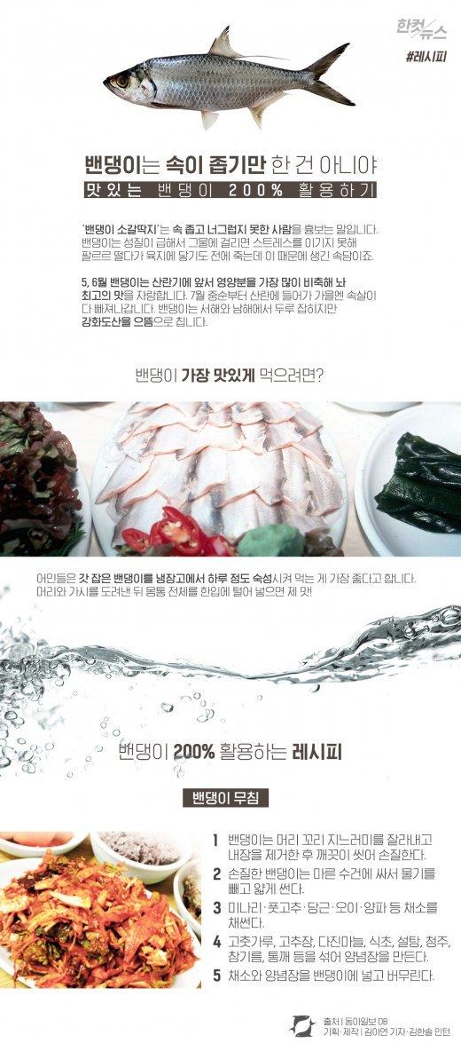 [한컷뉴스] 요즘 딱 제철인 밴댕이, 맛있게 먹는 법?