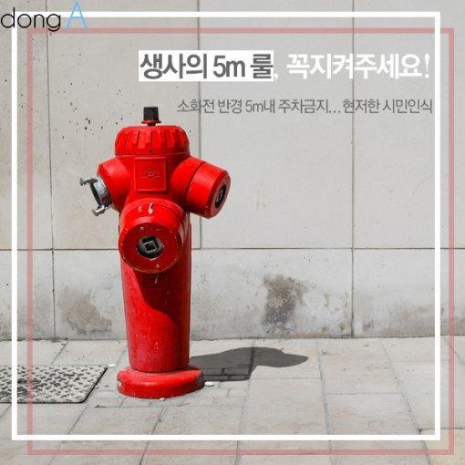 [카드뉴스]'생사의 5m' 룰, 꼭 지켜주세요!