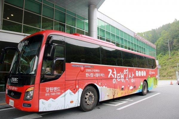 강원랜드 정태영삼 버스 패키지, 21일 운영 시작