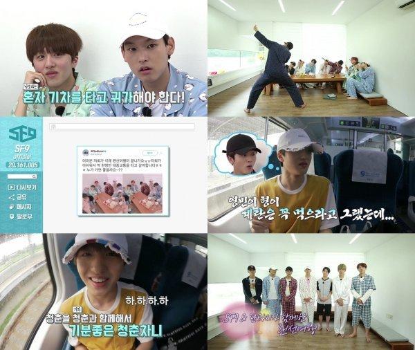 SF9, 리얼예능도 그레잇…비글미남들 '랜선여행'