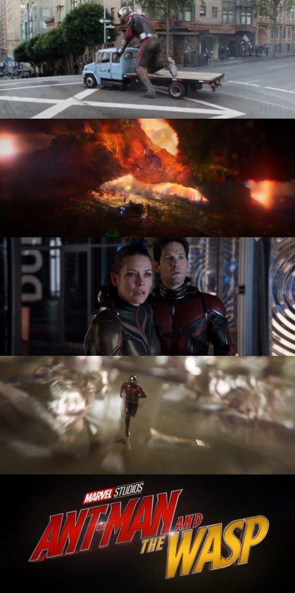 [DA:할리우드] '앤트맨과 와스프', 마블 미래 핵심키 될까