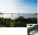 착한 여름 여행, 인천 섬 드라이브 스루