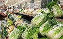 역대급 긴 장마에 채소류 가격 폭등 '금채소' 파동 올까 우려