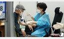 '백신 오류' 막으려면? 본인 확인부터…'물백신·과다·과소 투여' 논란