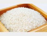 벼의 고향을 모르고 먹어왔던 흰쌀. [사진 제공·김민경]