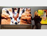 한 모델이 인공지능 프로세서 '알파9 3세대'를 탑재한 88형 'LG 시그니처 올레드 8K' 신제품을 소개하고 있다. [사진 제공 · LG전자]