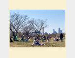 한강시민공원 이촌지구 잔디공원에는 아직 그늘막 설치가 허용되지 않아 시민들은 주로 돗자리와 캠핑용 의자를 갖다놓고 봄날 소풍을 즐겼다.