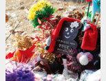 양부모의 학대로 숨진 입양아 정인이가 잠들어 있는 경기 양평 하이패밀리 안데르센 공원묘지. [동아DB]