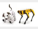 대표적인 반려로봇 '아이보'(왼쪽)와  충견형 만능 로봇 '스폿'. [소니, 보스턴다이내믹스]