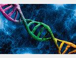 DNA를 통해 인간 수명이 언제쯤 끝날지 추론할 수 있다. [GettyImages]