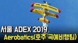호주 곡예비행팀(Maxx G)의 경이로운 저공 곡예비행