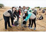 """대한항공, 中 쿠부치 사막 나무심기 봉사활동 진행…""""올해 157만 그루 숲 조성"""""""