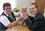 가족들 몰래 100여명의 장례식 참여하고 유가족 위로해준 고양이