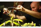 셀카 찍는 고사리?..런던동물원의 식물셀카 실험