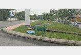 온몸에 페인트 뒤집어쓴 '녹색' 개 발견..'동물학대' 비난