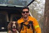 """""""특명, 코알라를 구하라!"""" 호주 산불현장에 투입된 탐지견들"""