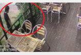 경의선 숲길 고양이 살해 30대..징역 6개월 실형 법정구속