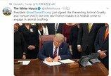 트럼프, PACT법 서명..미국선 동물학대시 최장 징역 7년