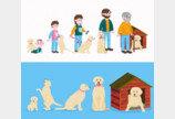 강아지 나이 측정의 새로운 방식, 정말 정확한가요