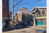 서울시, 재개발·재건축 지역 길고양이 보호체계 세운다