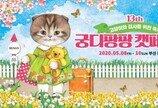 국내 최대 고양이 박람회 '궁디팡팡 부산' 개최 연기