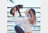이빨 닦는 고양이 본 적 있냐옹?..`집사 따라냥이의 진화`
