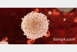 """""""회복환자 혈장 활용해 고밀도 면역 항체 확보""""… GC녹십자, '코로나19 혈장치료제' 이르면 하반기 상용화"""