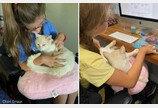 """휠체어 타고 보호소 방문한 소녀 집사로 '찜'한 고양이..""""이대로 집 가자옹"""""""